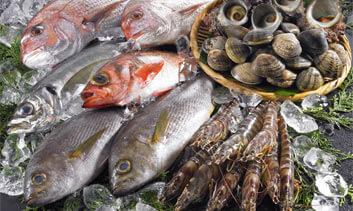 水産養殖業